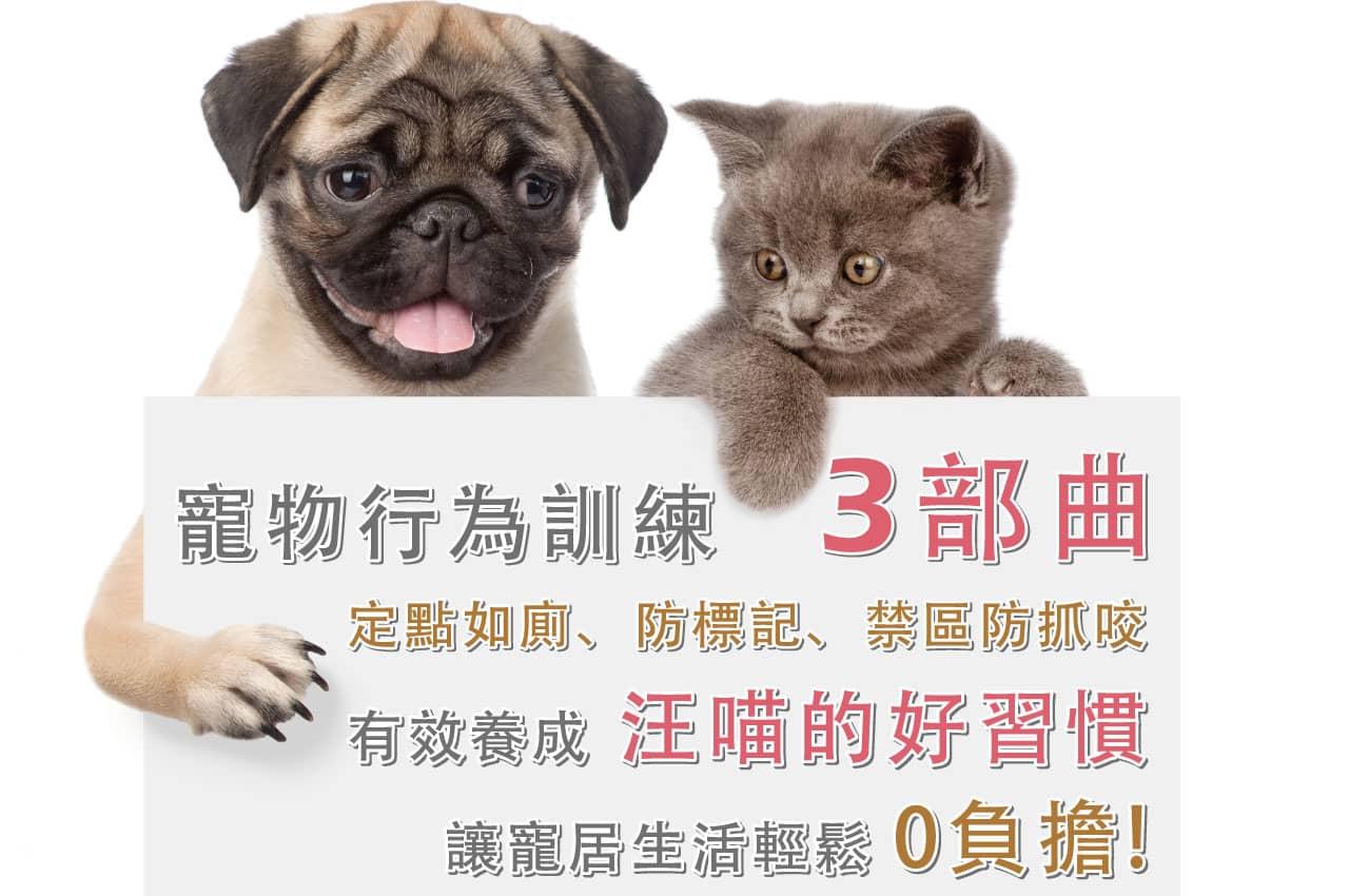 GBPH好寶貝寵物居家訓練三部曲!! 定點上廁所、消臭驅避防標記、寵物禁區防舔咬