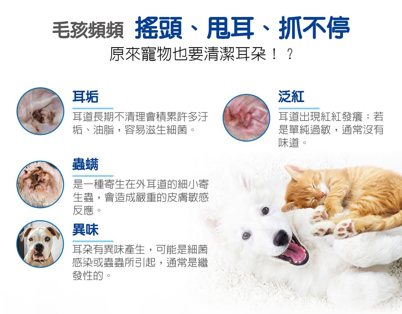 原來寵物也要清潔耳朵!?